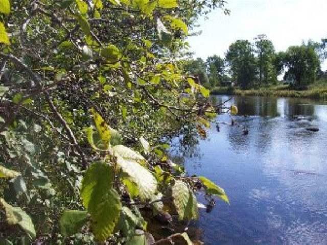ON Elk River Pkwy, Phillips, WI 54555