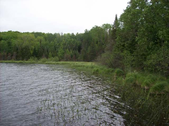 LOT 61 Bowie Rd, Presque Isle, WI 54557