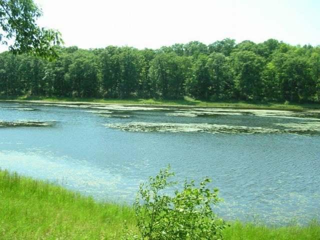 OFF Round Lake Rd #Weske Ln, Rhinelander, WI 54501
