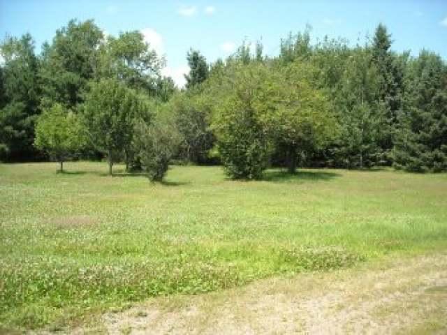 N8165 Little Elk Rd, Phillips, WI 54555