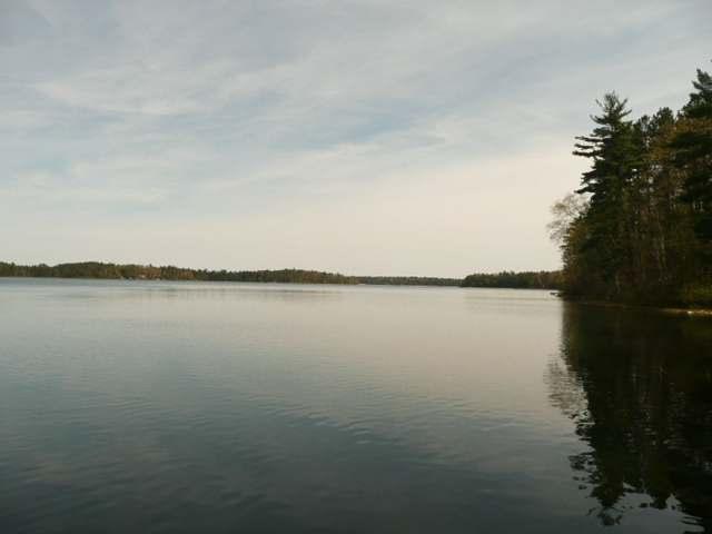 Adj 5350 Maple Leaf Dr, Land O Lakes, WI 54540