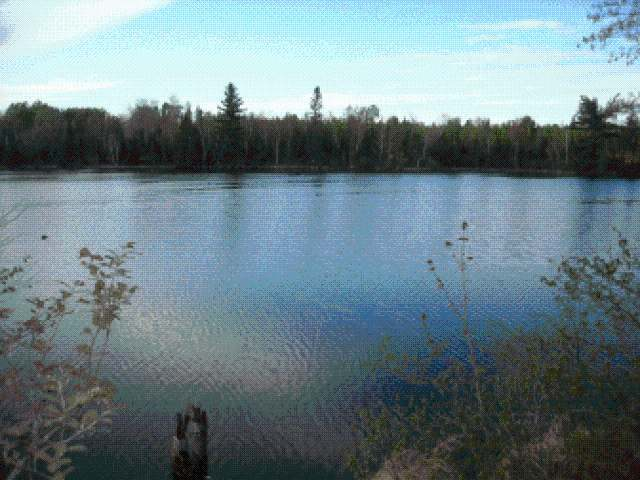 ON Club Rd W, Fifield, WI 54524