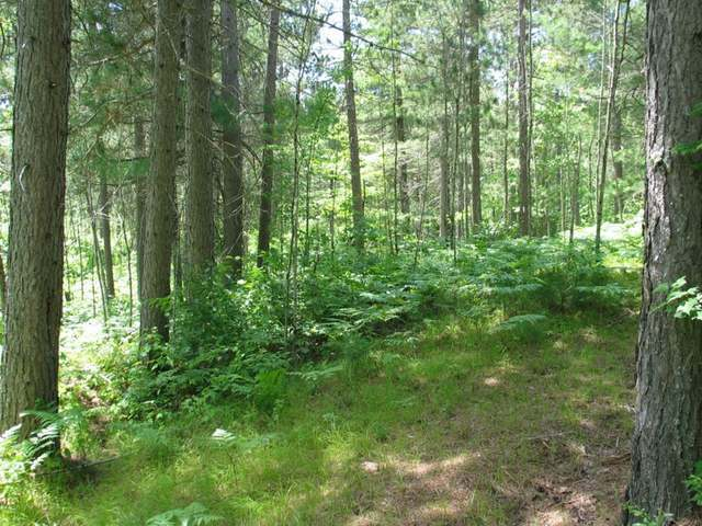 NEAR Moonlight Dr, Cloverland, WI 54558