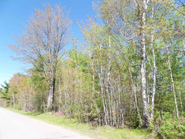 ON Lake Julia Rd, Rhinelander, WI 54501