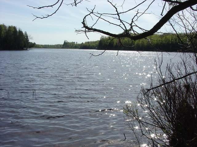 NEAR Pomeroy Lake Rd, Marenisco, MI 49947