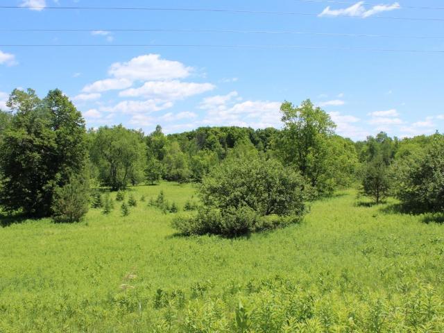 4.4 acre Cth S, Crandon, WI 54520