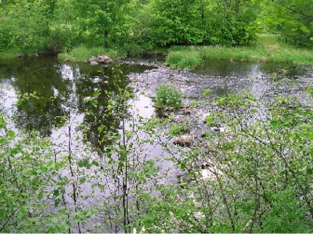 NEAR Soo Lake Rd W, Phillips, WI 54555