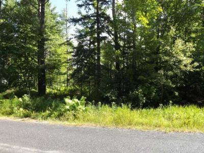 Photo of ON Minnesota St, Eagle River, WI 54521