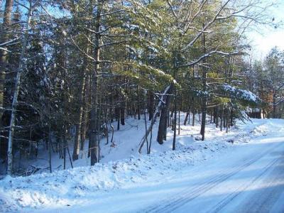 Photo of NEAR Maple St, Eagle River, WI 54521