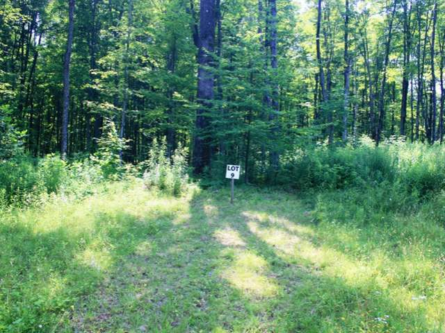 NEAR Hwy 2, Ironwood Township, MI 49938