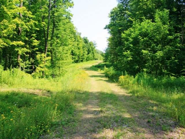 NEAR Hwy 2, Ironwood Township, MI 49938