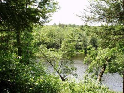 Photo of ON Sheltrow Rd, Crystal Falls Township, MI 49920