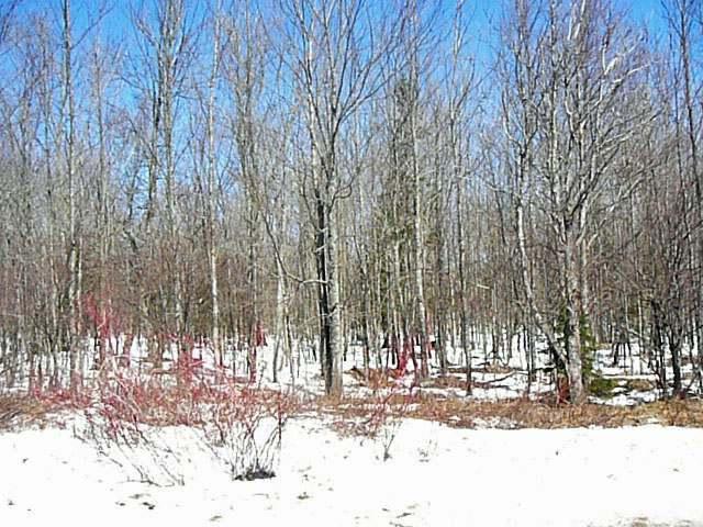 Lot 3 Margaret Ln, Park Falls, WI 54552
