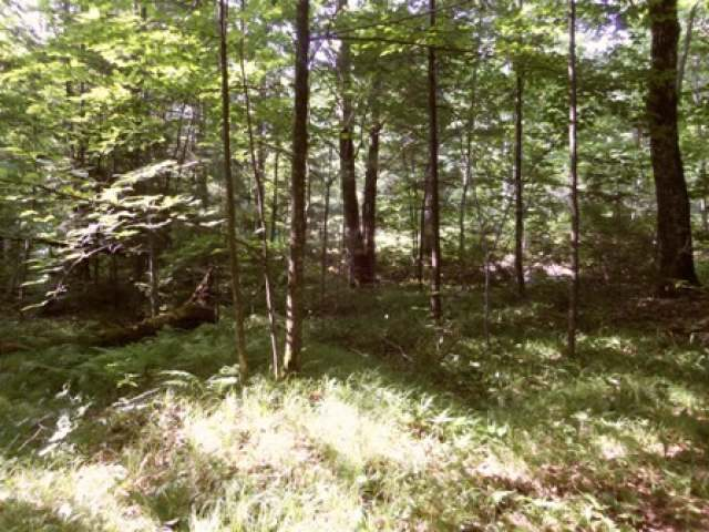 ON South Shore Dr, Summit Lake, WI 54424