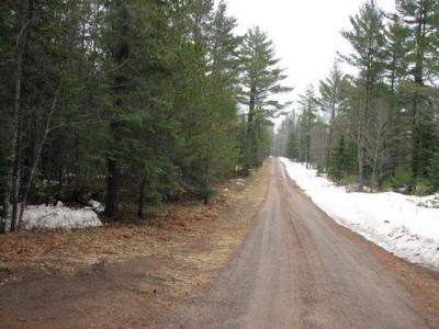 Photo of ON Hwy 45 #17.40 Acrs, Land O Lakes, WI 54540