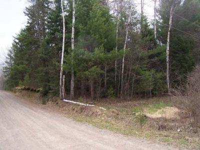 Photo of ON Country Ln, Phelps, WI 54554