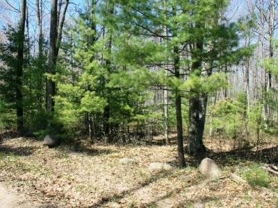 Photo of ON Lake Mildred Rd, Newbold, WI 54501