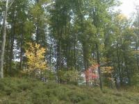 Lot 61 Pine Grove Dr, Rhinelander, WI 54501