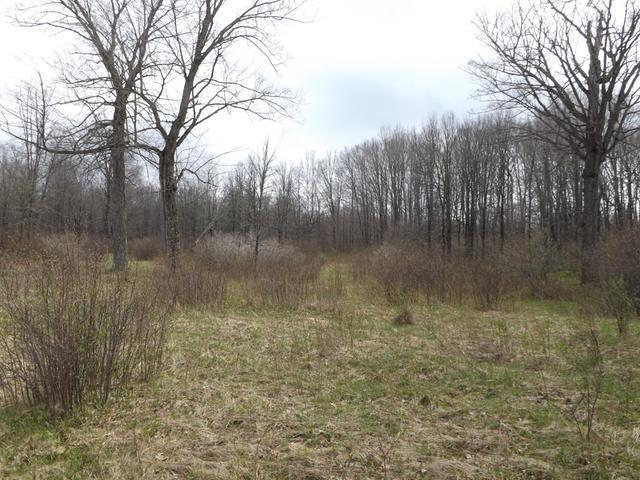 ON Porcupine Lake Rd E #Lot 6, Tipler, WI 54542
