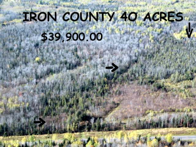 40 ACRES Hwy 77, Iron Belt Wi, WI 54536