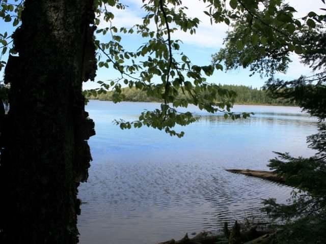 ON Elizabeth Ln, Iron River Township, MI 49935