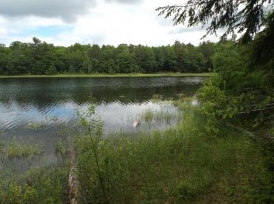 Photo of ON Manuel Lake Rd #Lot E, Phelps, WI 54554