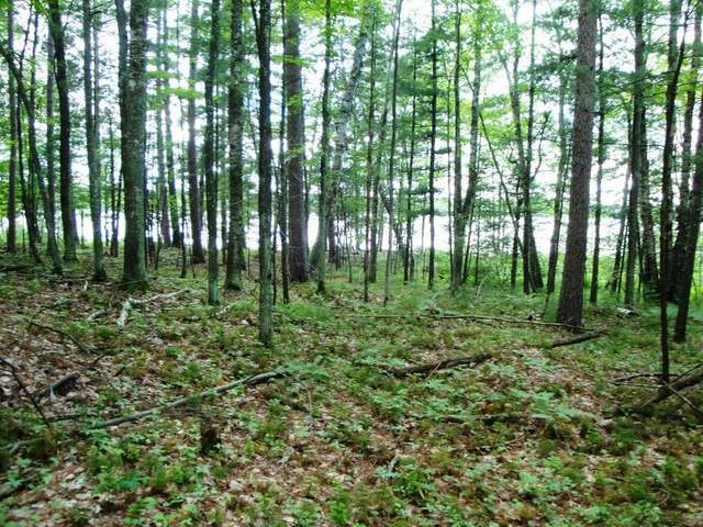Lot 6 Eagles Bluff Rd, Rhinelander, WI 54501