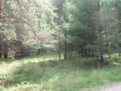 Photo of Lot 5 Whispering Pines Ln, Sayner, WI 54560