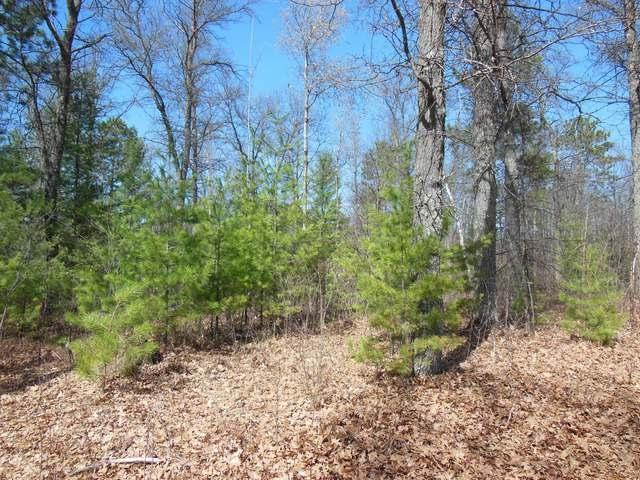 Lot 4 Clear Lake Rd, Tomahawk, WI 54487