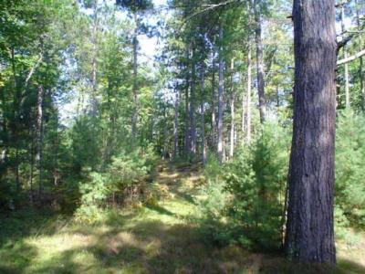 Photo of ON Forest Rd 2205a, Conover, WI 54519