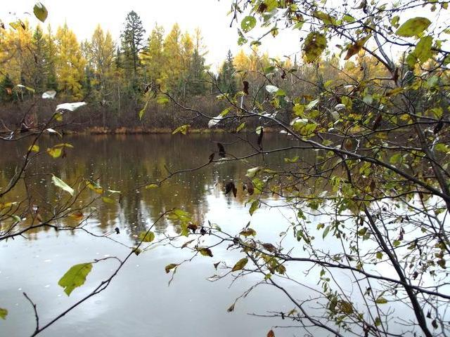 5813 Hwy 70 #Lot 1, Eagle River, WI 54521