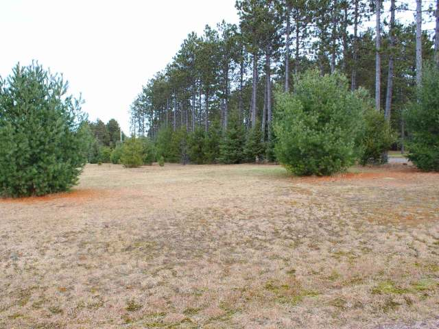 Lot 1 Trinity Ct, Woodruff, WI 54568