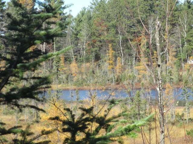 NEAR Pine Forest Rd, Mercer, WI 54547