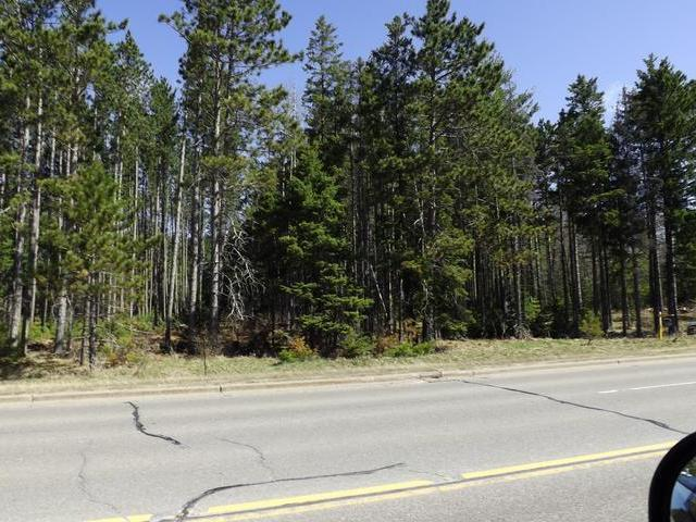 Pine St E, Eagle River, WI 54521