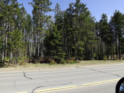Photo of Pine St E, Eagle River, WI 54521