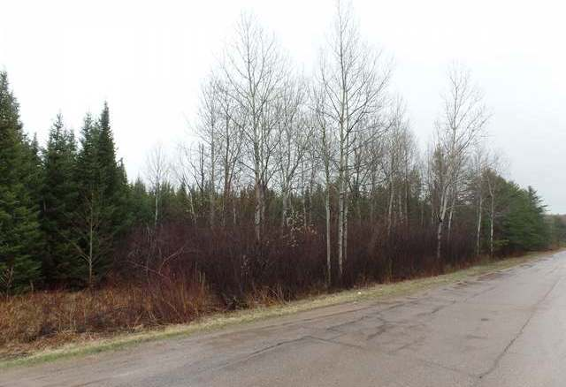 38.25 Ac Pine Ave, Merrill Township, WI 54452