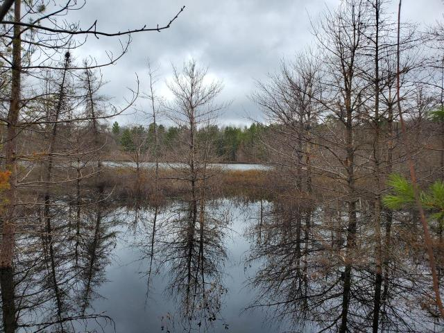 ON Brook Tr #Lot 12, Eagle River, WI 54521
