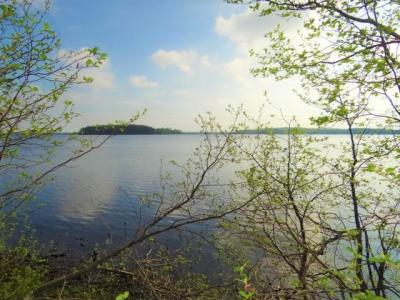 Photo of ON Anders Rd, Three Lakes, WI 54562
