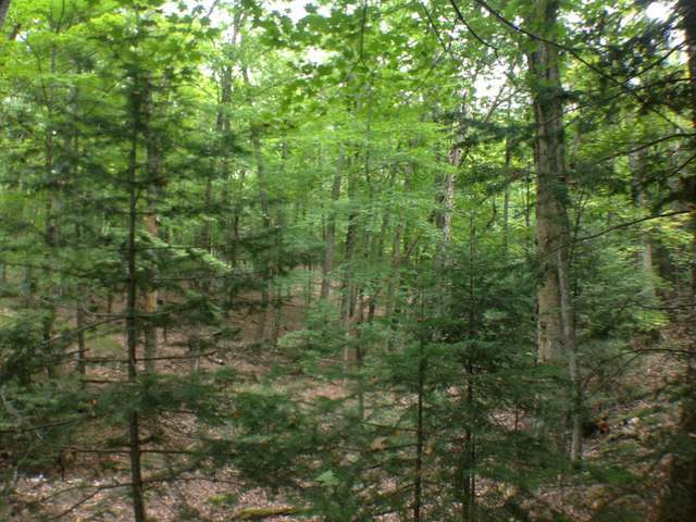 ON Hwy 70 #Lot 1, Eagle River, WI 54521