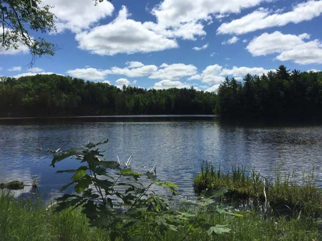 Lot 15 Overlook Dr, Gleason, WI 54435