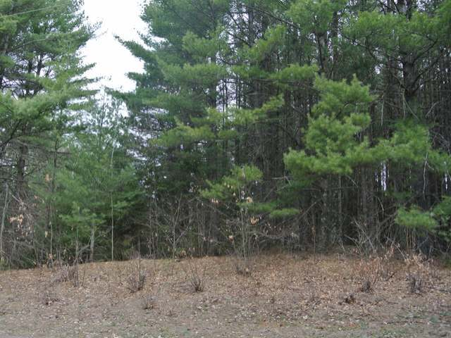Lot 9 Rockwood Dr, Lac Du Flambeau, WI 54538