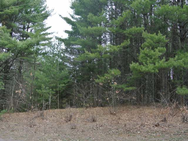 Lot 10 Rockwood Dr, Lac Du Flambeau, WI 54538