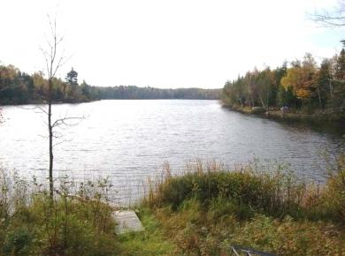 Lot 16 Shores Of Chaney Lake Rd, Bessemer, MI 49911