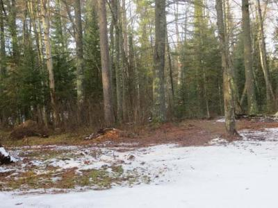 Photo of NEAR High Lake Rd, Boulder Junction, WI 54512