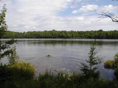 Photo of ON Kentuck Lake Rd, Phelps, WI 54554