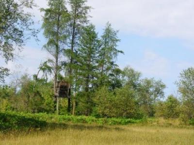 Photo of NEAR Old Farm Rd, Rhinelander, WI 54501