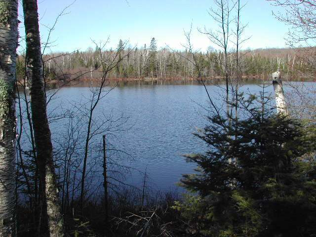 ON Moccasin Ln #Lt 7, Winchester, WI 54557