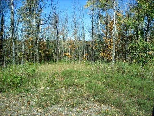 off Sheep Ranch Rd #4, Fifield, WI 54524