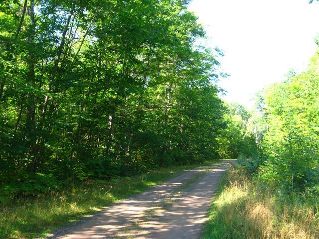 #3 Blue Goose Dr, Manitowish Waters, WI 54545