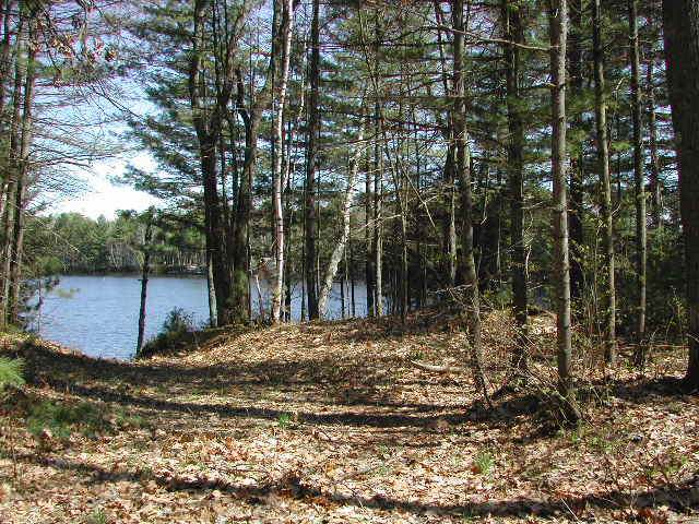 NEAR Hwy 51, Manitowish Waters, WI 54545